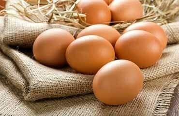 huevos frescos_polleria_somolinos