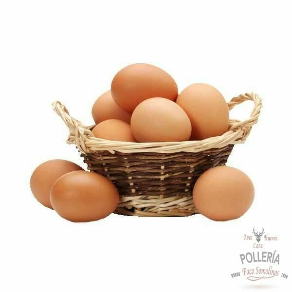 huevos ecologicos_polleria_somolinos