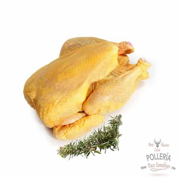 pollo campero_polleria_somolinos
